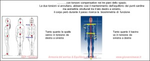 biosimmetria 2